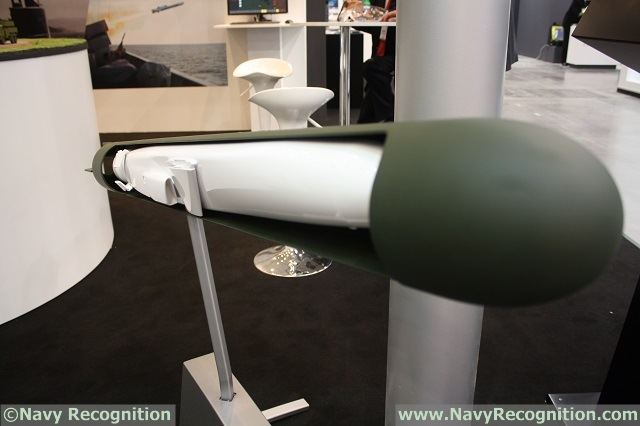 At the 13th Baltic Military Fair BALT-MILITARY-EXPO 2014 currently held in Gdansk, Poland, Kongsberg shows for the first time a concept of a submarine launched variant of its NSM (Naval Strike Missile). The missile is based on the JSM (the variant specifically designed to fit inside the F35 JSF jet's weapons bay). Kongsberg with its partner Nammo will design a specific booster to laucn the missile after breaking out of the water.