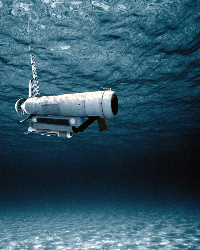 The remote minehunting system (RMS) successfully completed developmental testing, Dec. 9. The objective of the developmental testing (DT) was to demonstrate that the RMS met reliability, suitability and effectiveness requirements. Preliminary analyses of the results indicate that the RMS operated as expected and the test objectives were achieved.